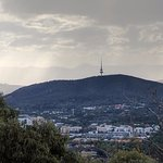 The Black Mountain and Telstra Tower from Mount Ainslie