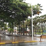 Coconut Square in the misty rain on a Saturday afternoon