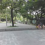 Ayala Triangle l, a lot come here to eat lunch and relax for 30 minutes