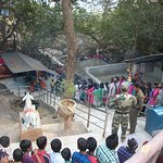 Pancha Lingeswar Temple Queue