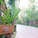 Foto de Anchana Resort and Spa