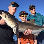 Nice Cobia the guys caught on a full day trip!