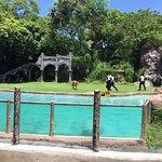 Foto de Bali Safari & Marine Park
