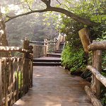 Romantic trails to walk hand in hand with your sweetheart!