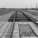 The extended rail line to avoid delays, off the train to the gas chambers