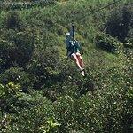 Foto de Skyline Eco Adventures - Akaka Falls