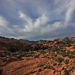 Hidden Pinyon Trail