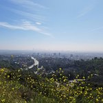 Overlooking Hollywood Bowl and Downtown LA