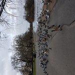 Photo of Regent's Park