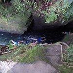 Photo of Middleham Falls & Ti Tou Gorge