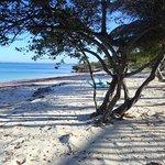 Photo de Hotel Tucan Siho Playa