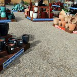 Plant pots of various colors and sizes all very reasonably priced