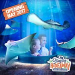 the only stingray experience of its kind in North America, will open in May. The highly interact