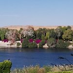Photo de Aswan Botanical Garden