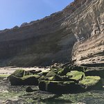 La Loberia - Punta Bermeja