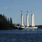 Many, many schooners ply the waters of East Penobscot Bay