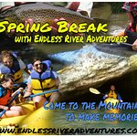 Forget the beeach and come to the Smoky Mountains for your spring break!