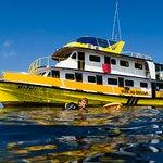 Photo de Sea Bees Diving - Chalong