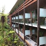 Photo de Te Waonui Forest Retreat