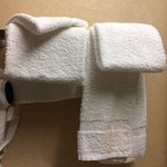 """Our """"clean"""" towel"""
