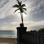 Elbow Beach, Bermuda-bild