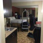 Foto de Holiday Inn Express Hotel & Suites Memphis Germantown