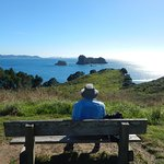 Beautiful Scenery on track to Cathedral Cove