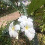 Foto de Good Days Lanta Beach Resort