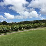 Photo of The Country Club at Sandy Lane