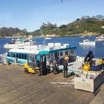 Stewart Island Ferry - Stewart Island Experience Foto
