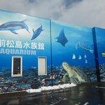 Photo of Echizen Matsushima Aquarium