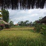 Photo of Warung Rai Pasti