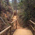 Foto de Parque Arví