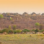 View of lodge from Chobe floodplain