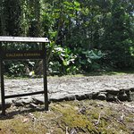Guayabo National Park and Monument Foto