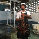 Photo of Lobster Alive