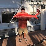 Another large queen snapper