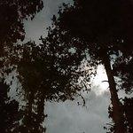 صورة فوتوغرافية لـ 729,953