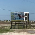 Sign in front and saddling stable seen from road