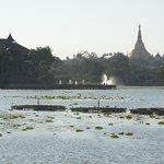 Shwedagon Pagoda across the lake
