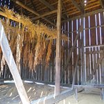 Tobacco barn's walls are slatted for circulating air to dry tobacco leaves.