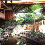 the koi pond inside the lower level