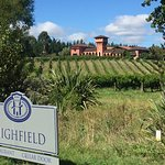 First glimpse of Highfield