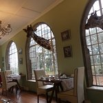 Breakfast room with the giraffes ready to eat!