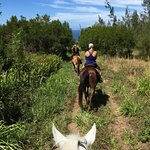 Enjoyed the beauty of natural Maui on this trail-ride.