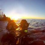 Photo de Dolphin Encounter