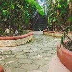 Cocos Cabanas Foto