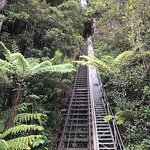 Photo de Scenic World Blue Mountains