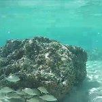 Foto de Great Stirrup Cay