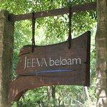 Jeeva Beloam Beach Camp Foto